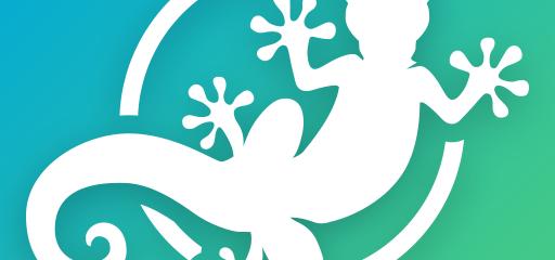 Gecko VPN For Windows